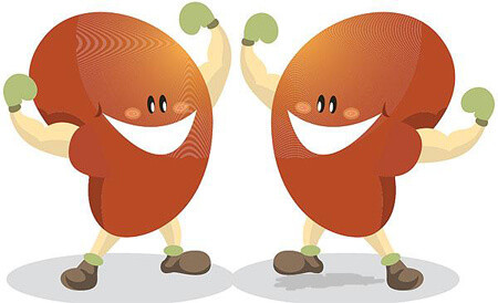 heal kidneys natural remedies