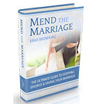 Mend The Marriage System PDF