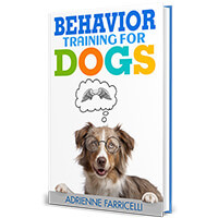 Brain Training For Dogs PDF