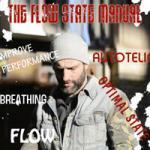Flow State Training PDF