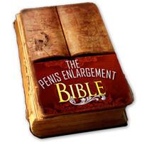 Penis Enlargement Bible PDF